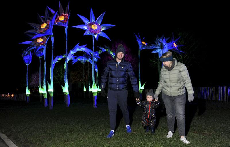gallery-winter-glow-1