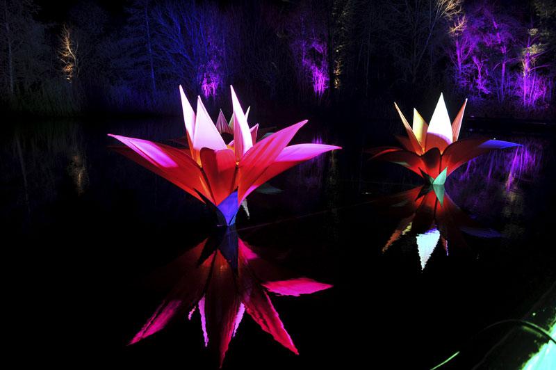 gallery-winter-glow-3