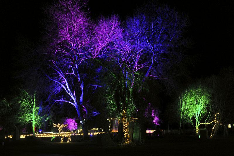 gallery-winter-glow-7